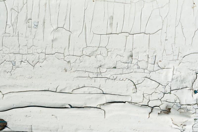 Le mur en bois avec la peinture blanche est sévèrement survécu et épluchage photographie stock libre de droits