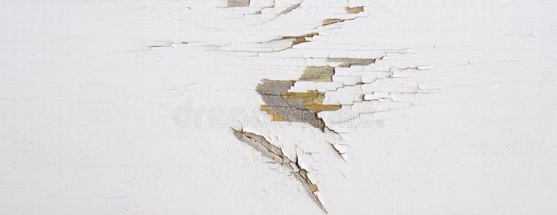 Le mur en bois avec la peinture blanche est survécu et épluchage image libre de droits
