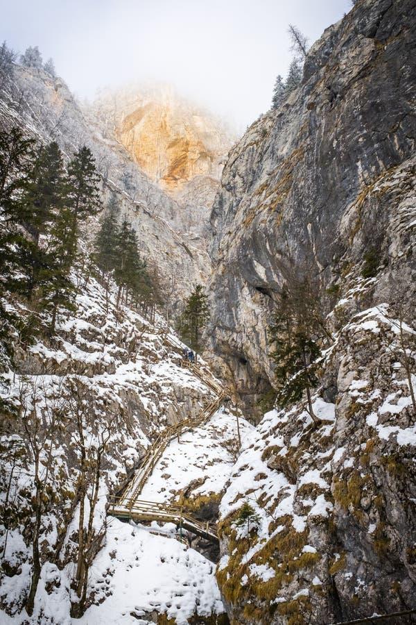 Le mur et la vallée rouges de montagne gorgent Baerenschuetzklamm avec le wodde images libres de droits