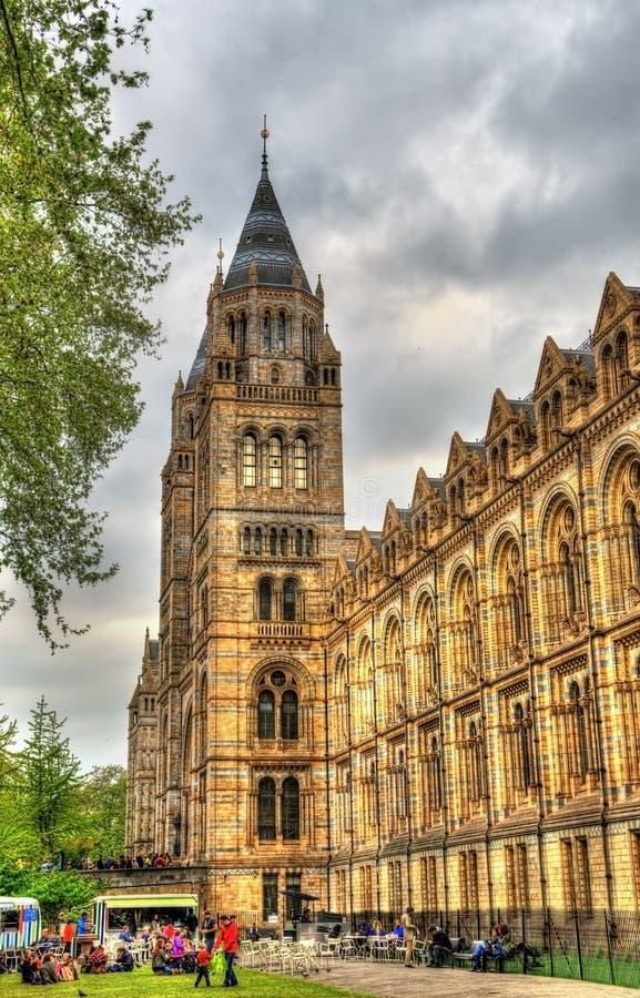 Le musée d'histoire naturelle à Londres photo stock