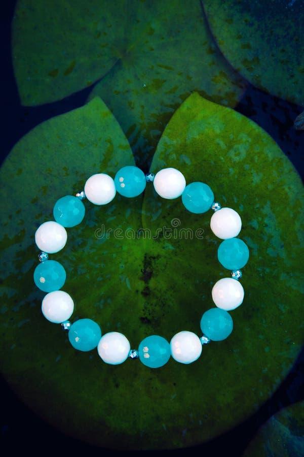 Le nénuphar blanc bleu argenté de rivière de bracelet de pierre d'agate pousse des feuilles congelé photographie stock libre de droits
