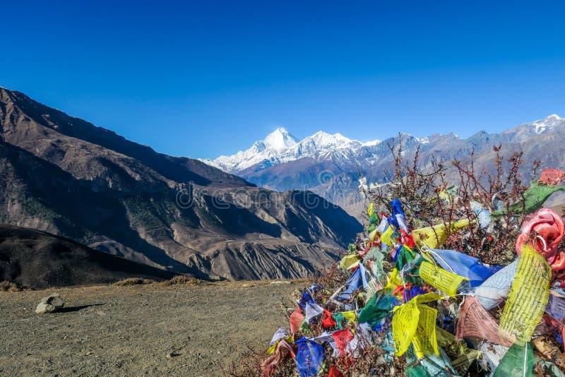 Le Népal - les drapeaux de la prière ont embrouillé sur le buisson avec une vue sur Dhaulagiri I images libres de droits