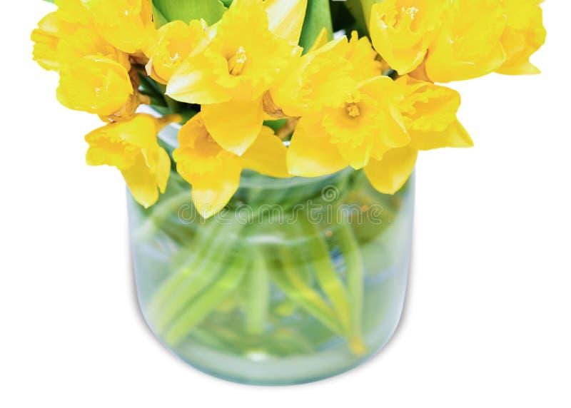 Le narcisse jaune fleurit le bouquet à l'arrière-plan blanc de vase image stock