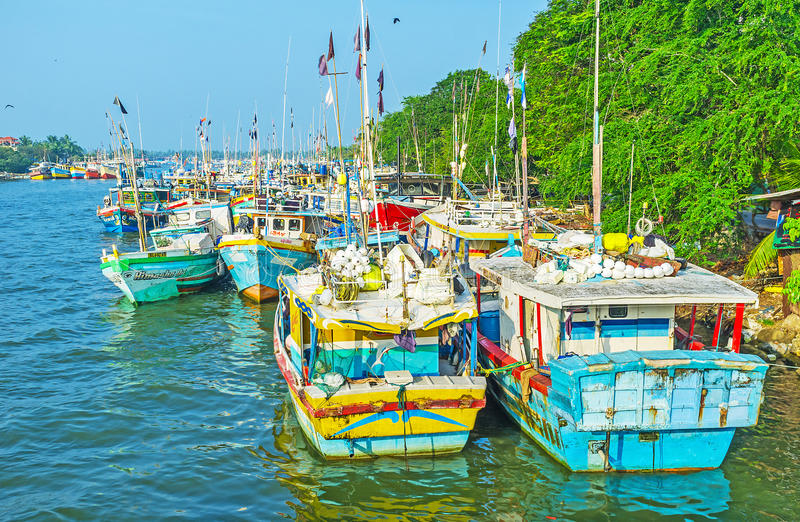 Le navi nella laguna di Negombo fotografia stock libera da diritti