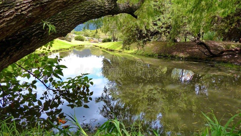 Le ND de ¾ de pÐ au parc archéologique Pumapungo, Cuenca, Equateur photographie stock libre de droits