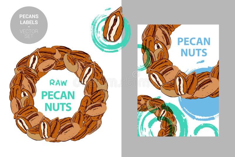 Le noci americane crude identificano Distintivo variopinto creativo con il semicerchio dei dadi Cerchio dei pecan disegnati a man illustrazione vettoriale