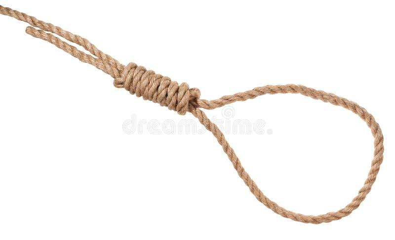 le noeud du bourreau attaché sur la corde épaisse de jute d'isolement images libres de droits