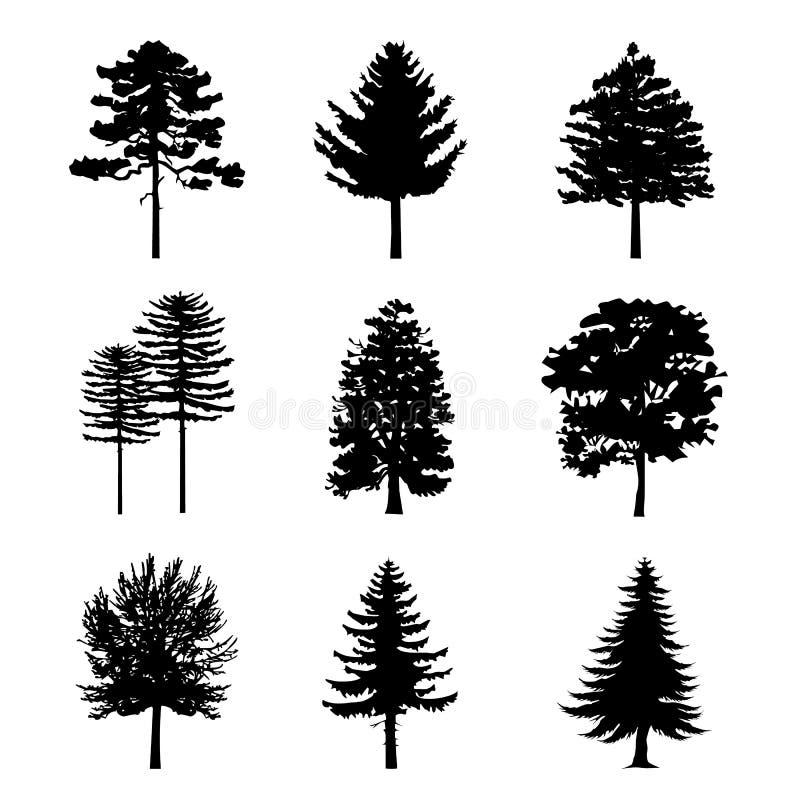 Le noir aride de branche d'arbre silhouette la nature Forest Vector Illustration illustration de vecteur