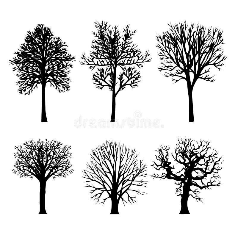 Le noir aride de branche d'arbre silhouette la nature Forest Vector Illustration illustration libre de droits