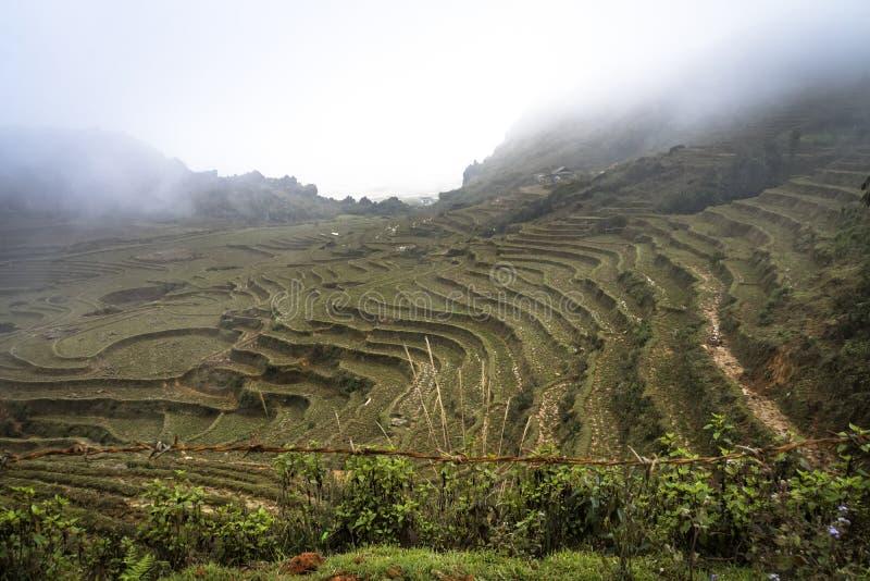le nuage descend sur les montagnes entre lesquelles il y a un village vietnamien et des terrasses de riz Beau paysage de montagne photo stock