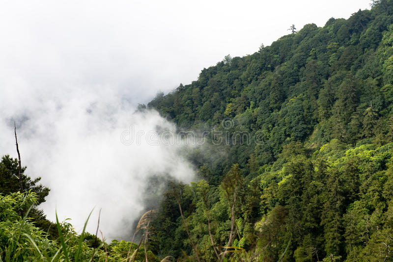 Le nuage sur la montagne photographie stock