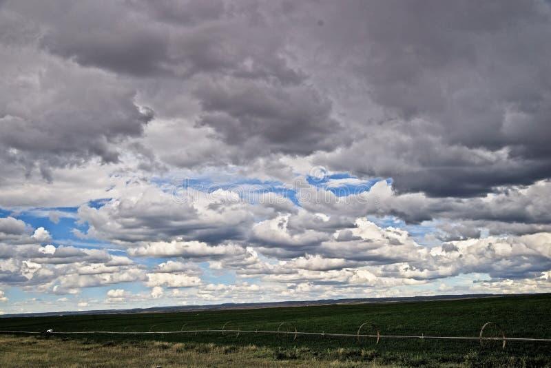 Le nuvole della riunione annunziano una tempesta dell'estate in Colorado rurale fotografia stock libera da diritti