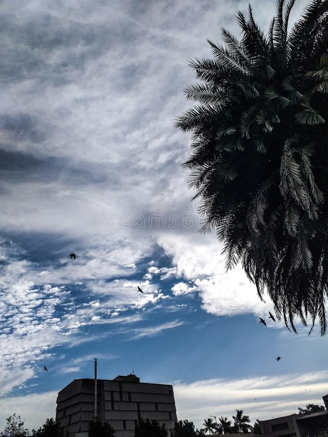 Le nuvole vengono galleggiando nella mia vita, più per non portare la pioggia o annunciare la tempesta, ma per aggiungere il colo fotografie stock