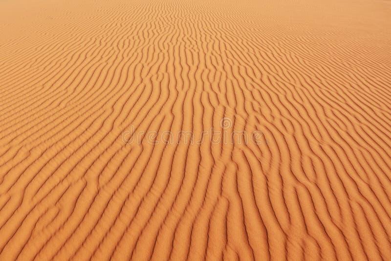Le onde di sabbia delicate scintillano al sole fotografie stock libere da diritti