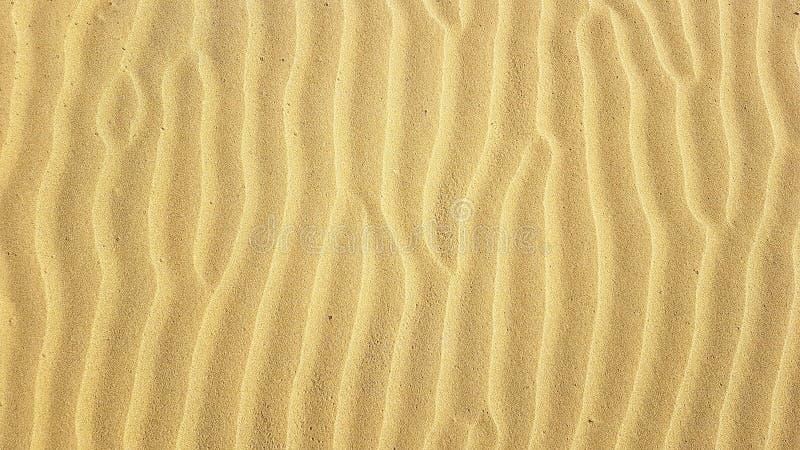Le ondulazioni della sabbia strutturano il modello a forma di con forte vento sulla spiaggia sabbiosa dell'estate immagine stock