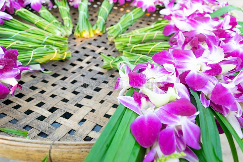 Le orchidee che sono preparate sul vimine fotografia stock