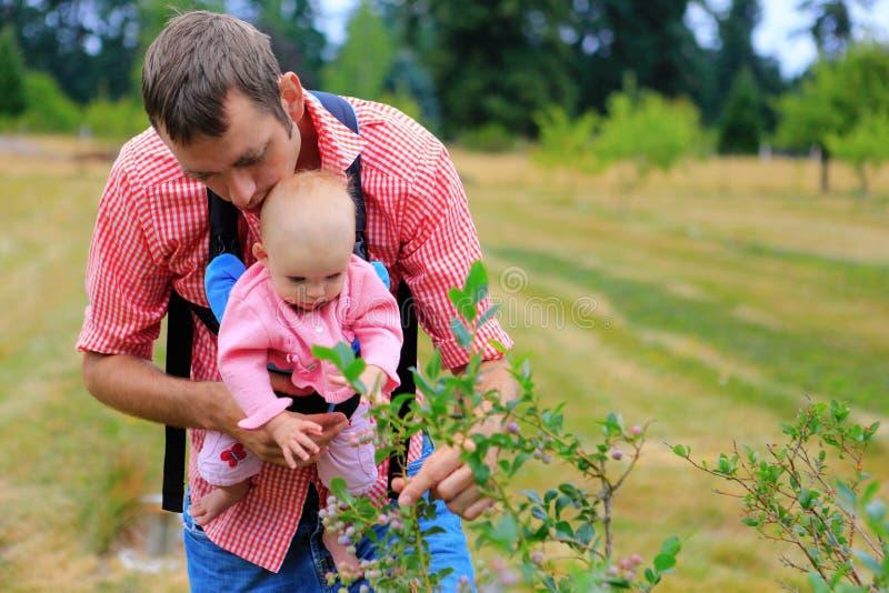 Le père et le bébé avec le bébé lancent le transporteur prenant des myrtilles photos stock