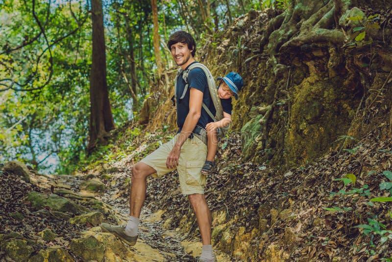Le père porte son fils dans un bébé que le transport augmente dans le touriste de forêt ramène un enfant sur le sien en forme de  photos libres de droits