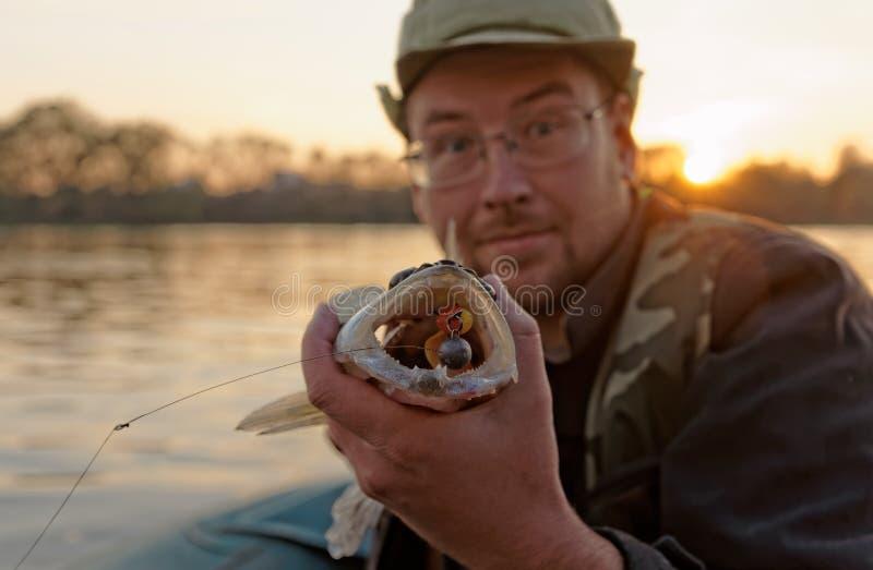 Le pêcheur montre les dents du brochet vairon photos stock
