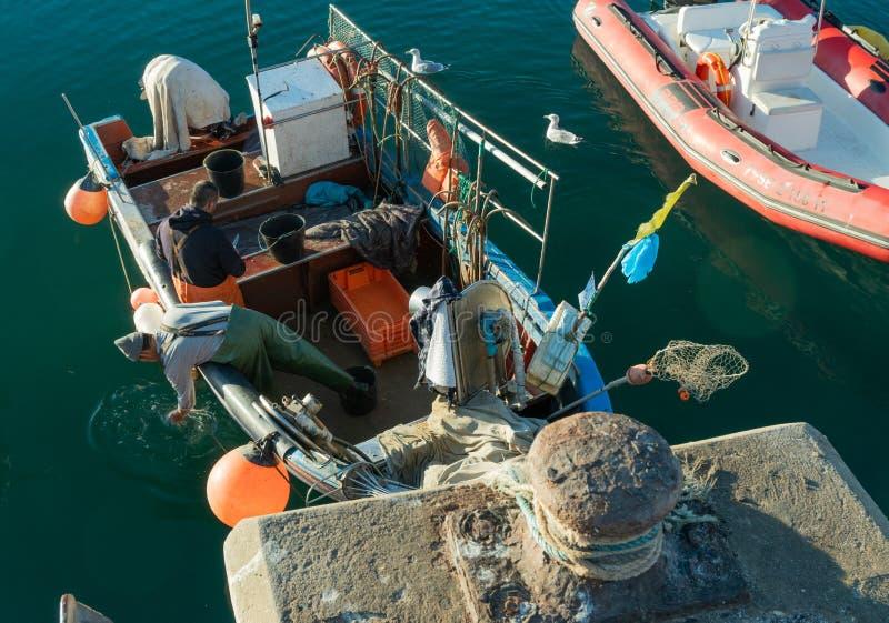 Le pêcheur nettoient ses poissons sur le bateau image libre de droits