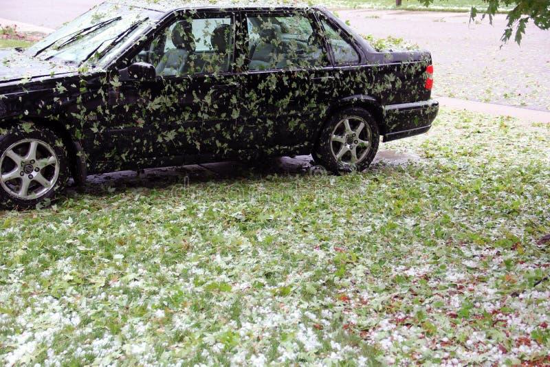 Le palline di ghiaccio della grandine danneggiano con le foglie cadute sull'automobile nera fotografie stock libere da diritti