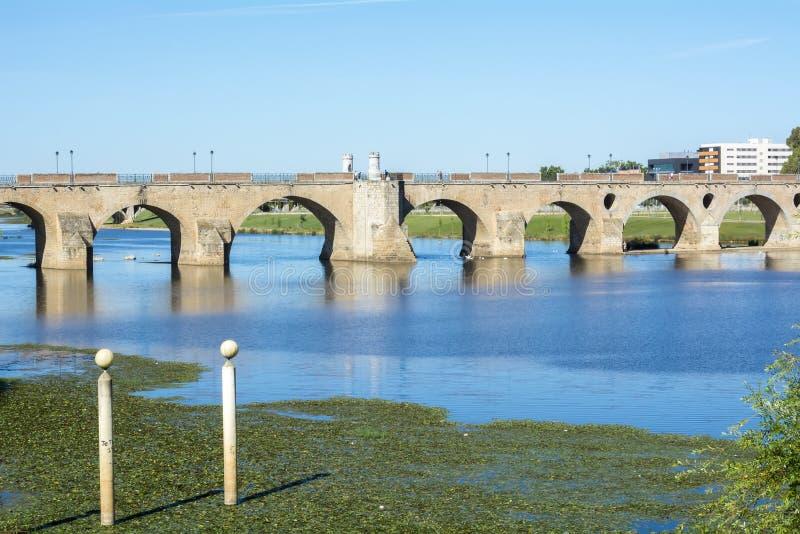 Le palme gettano un ponte su (Puente de Palmas, Badajoz), la Spagna immagini stock
