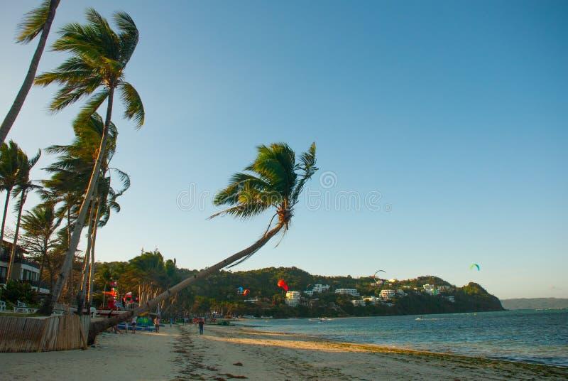 Le palmier flotte dans le vent Kitesurf Paysage de soirée d'une petite île et de la mer Boracay, Philippines photographie stock