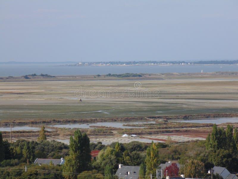 Le paludi d'acqua salata di Croisic in Francia fotografia stock