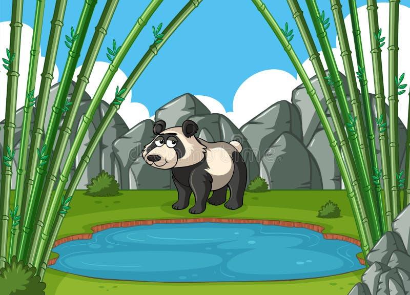 Le panda se tient prêt l'étang illustration stock