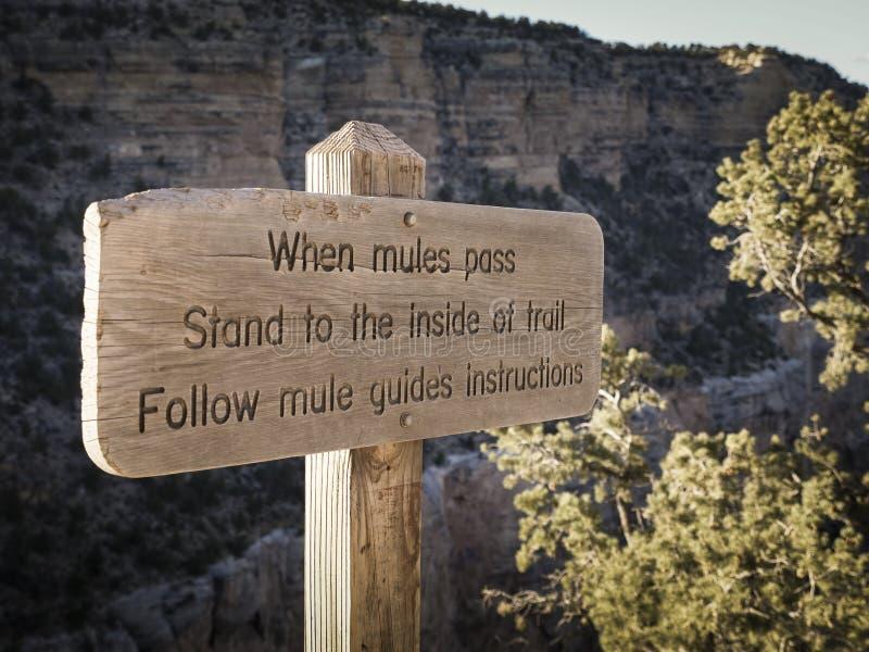 Le panneau d'avertissement concernant des mules passent dessus la traînée images libres de droits
