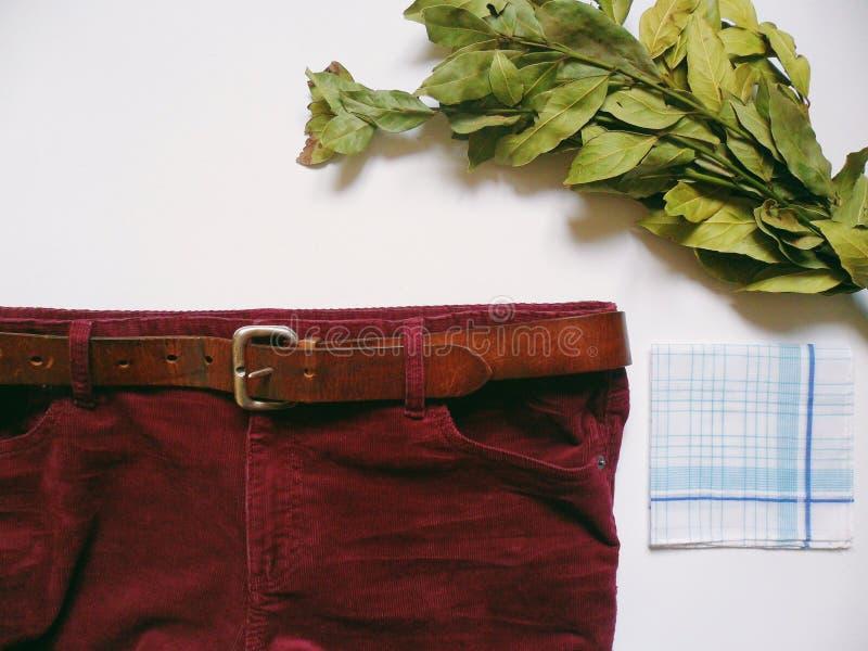 Le pantalon des hommes de Bourgogne de velours côtelé et le bouquet vert de laurier sur le fond blanc image stock