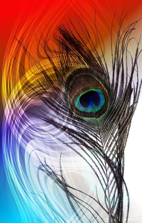 Le paon engendre avec le fond ombragé texturisé multicolore de vecteur abstrait Illustration de vecteur photo stock