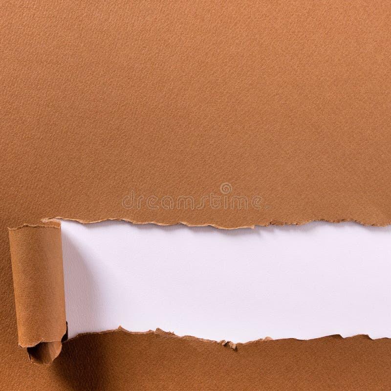 Le papier brun d?chir? a longtemps roul? le fond blanc de cadre d'en-t?te de rebord inf?rieur photographie stock