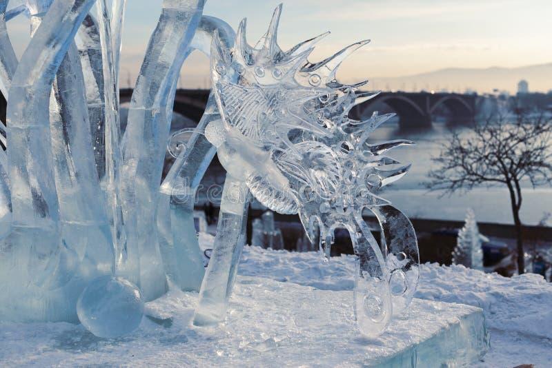 Le papillon de la glace photographie stock