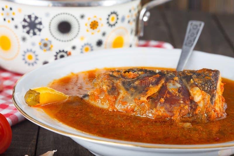 Le paprika chaud et épicé a basé le potage de poissons de fleuve images libres de droits