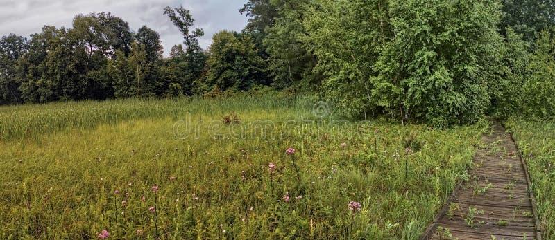 Le parc d'état de Glendalough est situé près du lac battle et du lac Ottertail, Minnesota images libres de droits