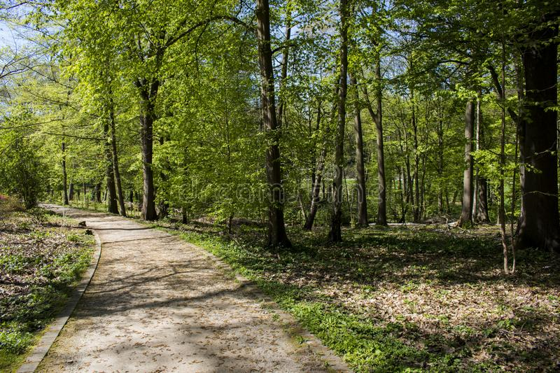 Le parc de Romberg de cuvette de chemin dans le ¼ de Brà nninghausen qui fait partie du réseau européen d'héritage de jardin photographie stock