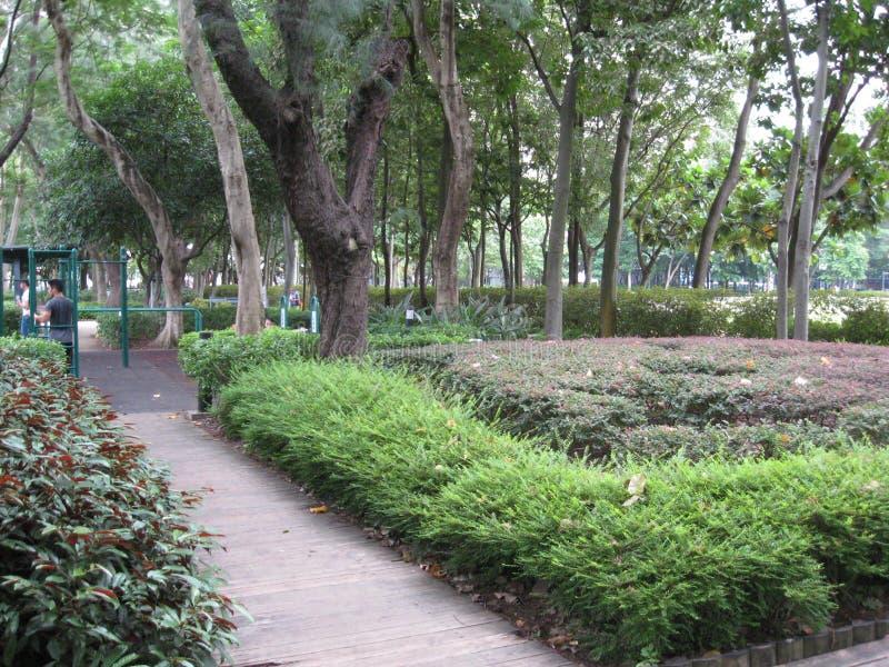 Le parc de Victoria d'ivrogne, Hong Kong image stock