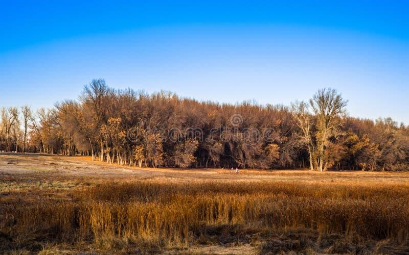 Le parc national image stock