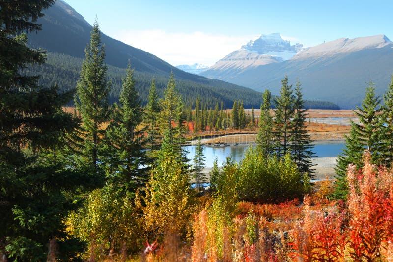 Le parc national de jaspe près des gisements de glace garent la manière images libres de droits