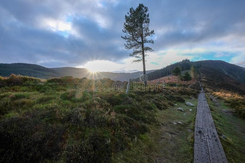 Le parc national de montagnes de Wicklow images stock