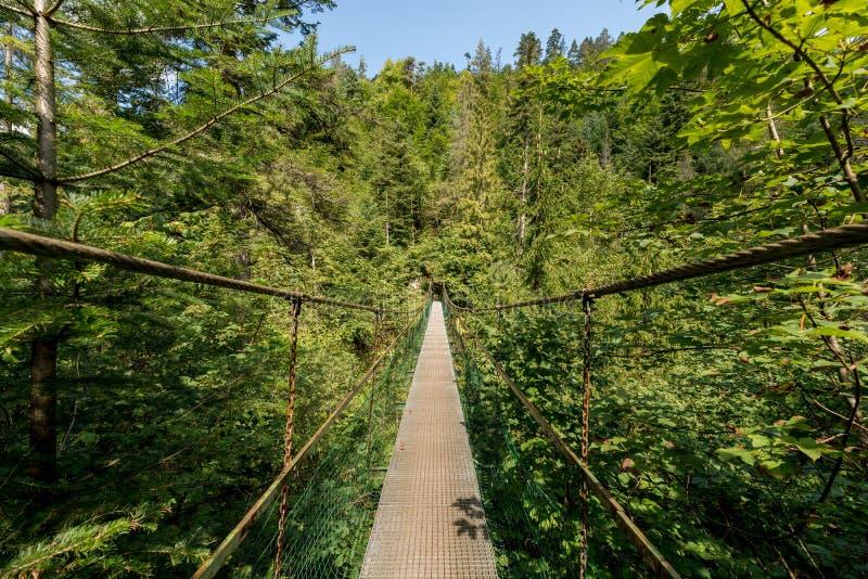 Le parc national de paradis slovaque photographie stock