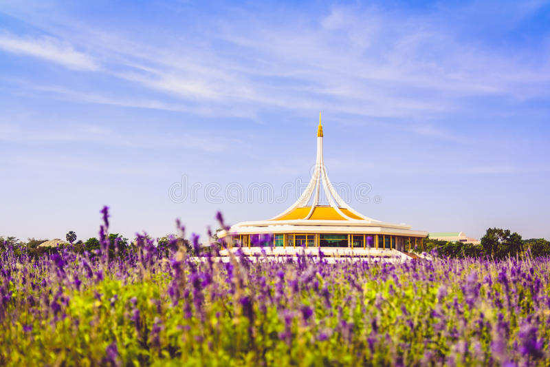Le parc public dans le rêve, à cent beaux milliers image libre de droits