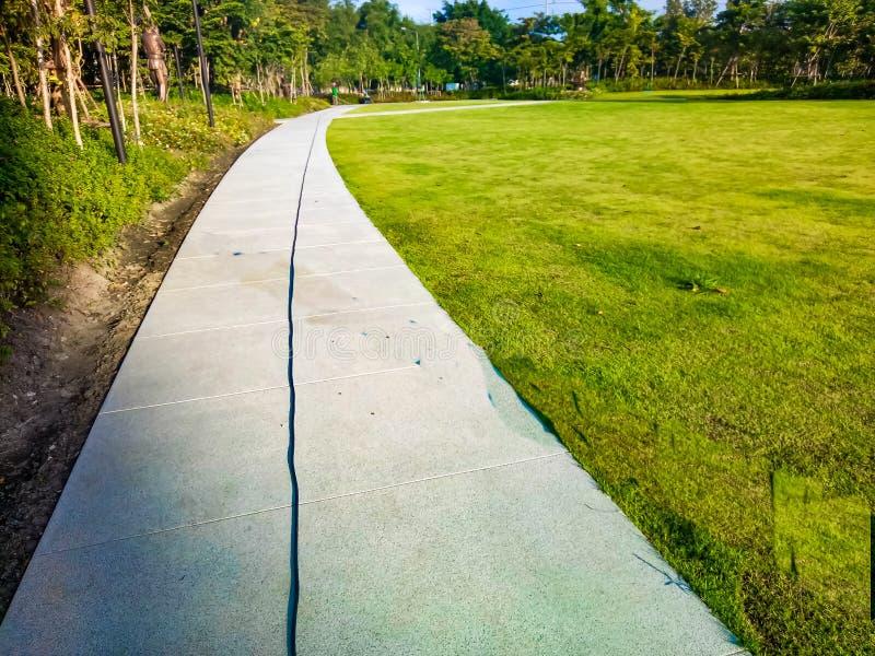 Le parc public de passage couvert de chemin par le champ d'herbe verte vers le lac le jour ensoleillé d'été image stock