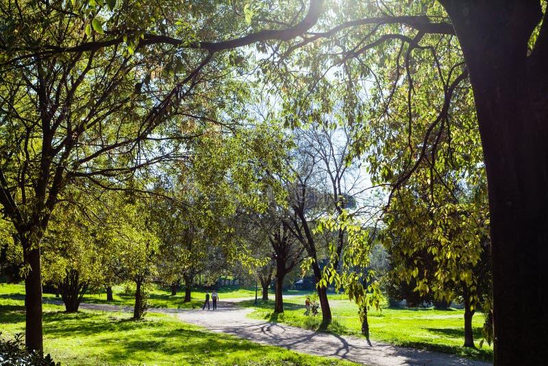 Le parc urbain vert de la villa Borghese fait du jardinage à Rome photographie stock libre de droits