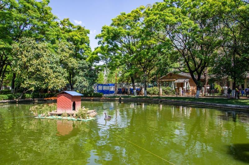 Le parc vert de lac également connu sous le nom de Cui Hu Park est l'un des parcs les plus beaux dans la ville de Kunming photos stock