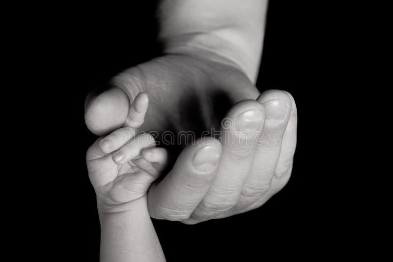 Le parent est la main de la chéri de fixation photographie stock libre de droits