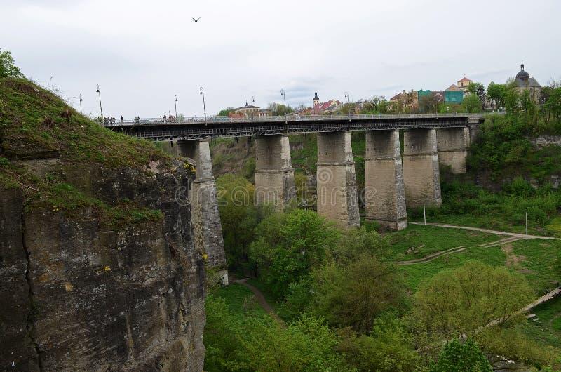 Le pareti di pietra ripide di vecchia fortezza sono coperte di fiori gialli e di alberi verdi contro lo sfondo del immagini stock