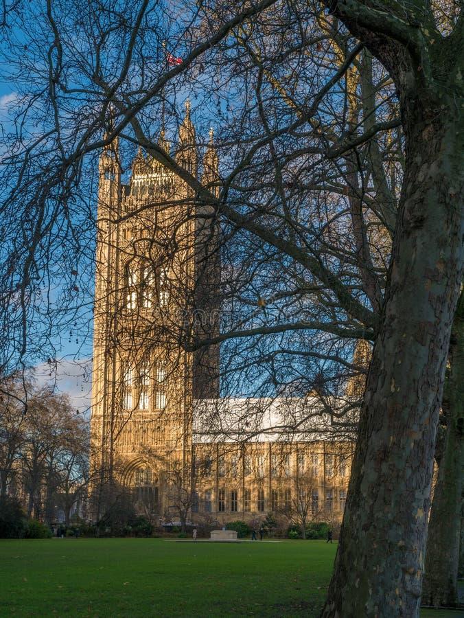 Le Parlement derrière les arbres nus photo libre de droits