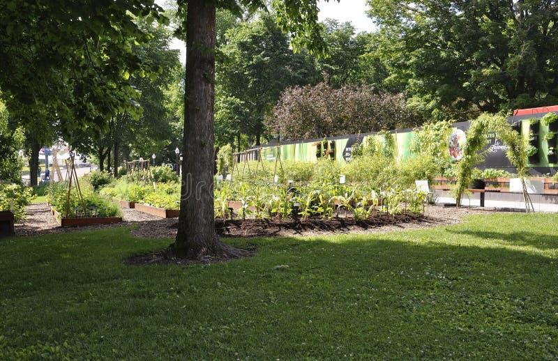 Le Parlement font du jardinage de Québec dans le Canada image stock